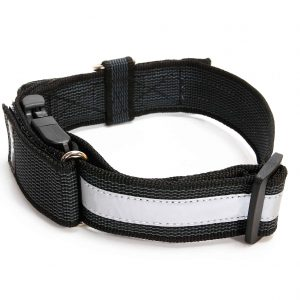 Julius-K9 Color & Gray Collar with Closable Handle and Safety Lock