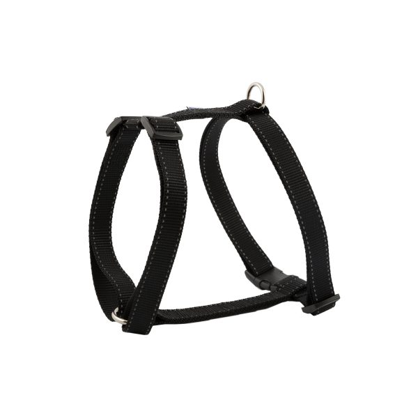 dog exercise harness