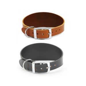 Leather Dog Collar for Greyhound & Whippet