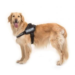 Julius-K9 IDC Dog Powerharness