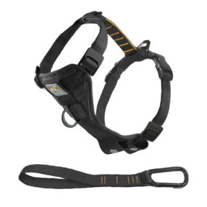 kurgo tru fit smart harness