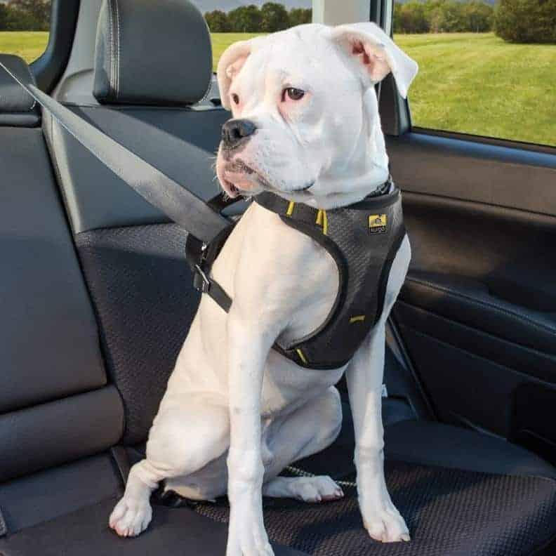 Kurgo Impact Dog Safety Harness Crash Tested Pet Shop Direct