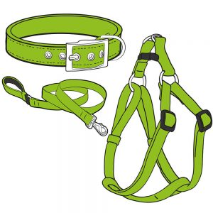 Dog Collars, Leads and Harnesses